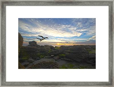 Morning Song Framed Print