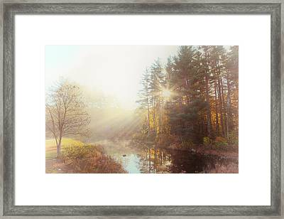 Morning Speaks Framed Print