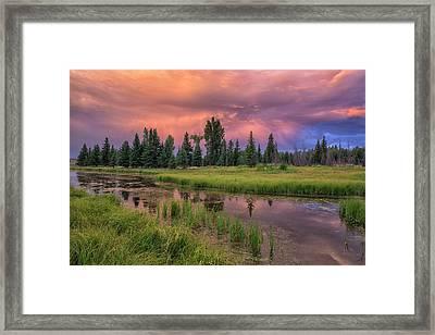 Morning Storm Framed Print