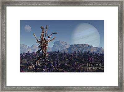 Morning Stroll Framed Print by Richard Rizzo