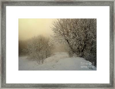 Morning Struggles Framed Print by Jan Piller
