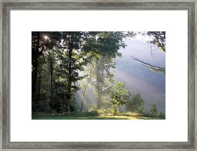 Morning Sun Framed Print by Kristin Elmquist
