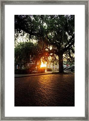 Morning Sun On The Bricks Of Savannah Framed Print