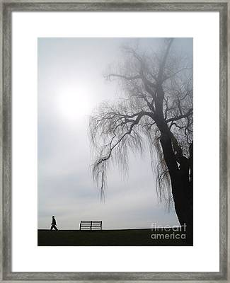 Morning Sun Tries To Break Through The Mist. Framed Print by Emilio Lovisa