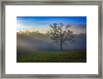 Morning Sunbeams In Cades Cove Framed Print