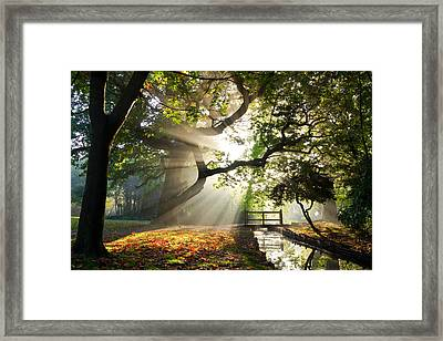 Morning Sunrise In Hampden Park Framed Print