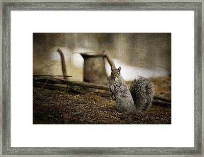 Morning Tea Framed Print by Everet Regal
