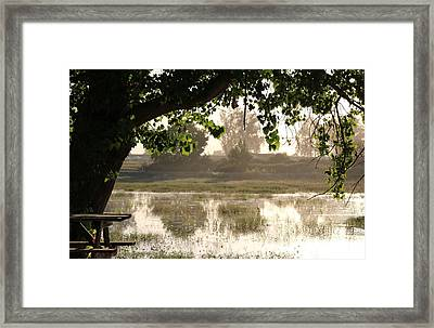 Framed Print featuring the photograph Morning Tranquility  by Christy Pooschke