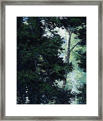 Morning Trees Framed Print by Paul Illian