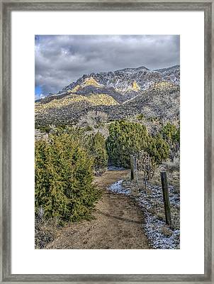 Framed Print featuring the photograph Morning Walk by Alan Toepfer