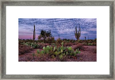 Framed Print featuring the photograph Morning Walk Along Peralta Trail by Monte Stevens