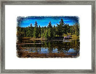 Framed Print featuring the photograph Morning Walk by Gary Smith