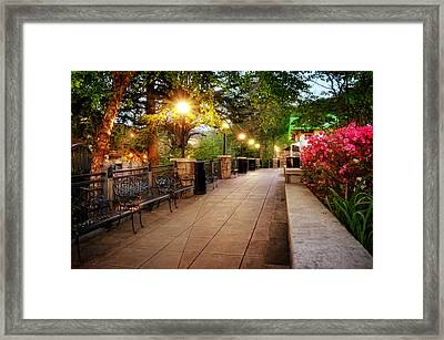 Morning Walk In Gatlinburg Tennessee Framed Print by Greg Mimbs