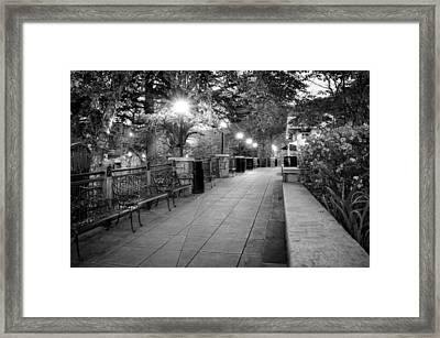 Morning Walk In Gatlinburg Tennessee In Black And White Framed Print by Greg Mimbs