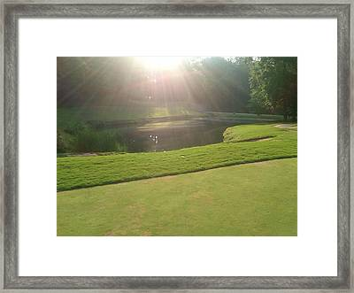Morninggreens Framed Print by Al Smith