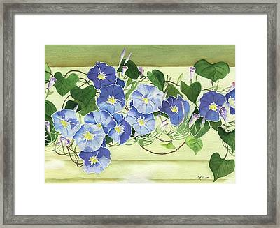 Mornings Glory Framed Print by Marsha Elliott