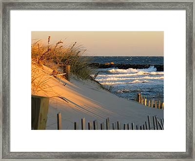 Morning's Light Framed Print