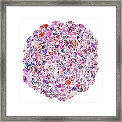 Moroccan Pink Flower Framed Print