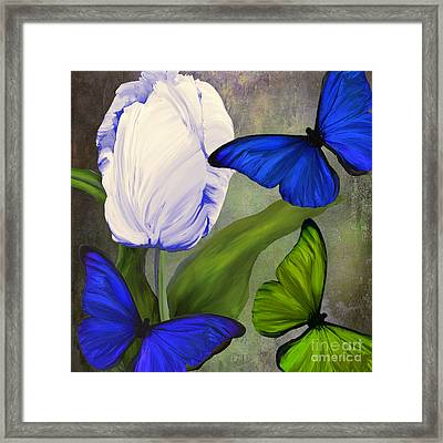 Morphos II Framed Print by Mindy Sommers