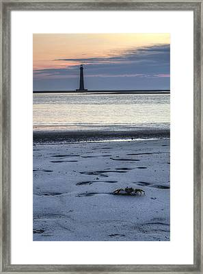 Morris Island Lighthouse And Crab Framed Print by Dustin K Ryan