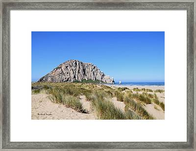 Morro Rock From The Dunes 2 Framed Print by Barbara Snyder