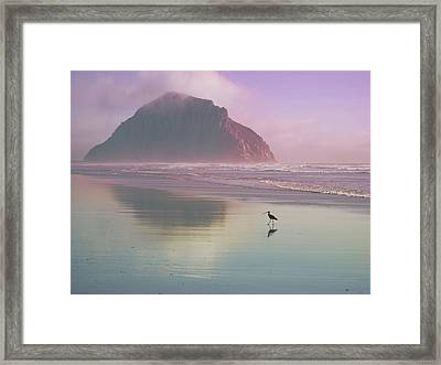 Morro Rock Framed Print by Kevin Bergen