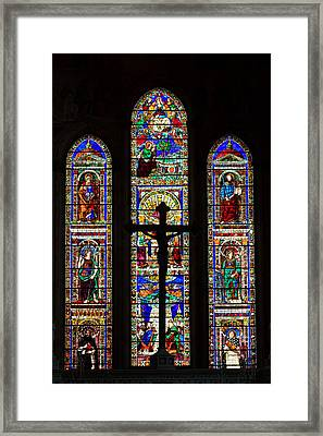 Mosaic Framed Print by Davide Guidolin