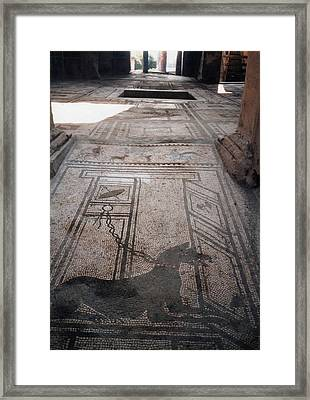 Mosaic In Pompeii Framed Print by Marna Edwards Flavell