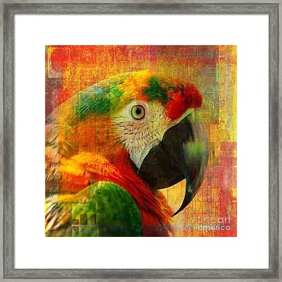 Mosaic Macaw 2016 Framed Print