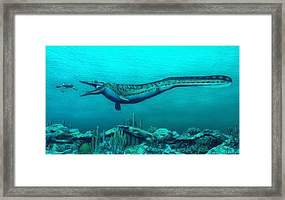 Mosasaurs Framed Print by Walter Colvin