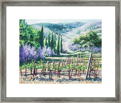 Mosby's Vines On Santa Rita Hills Framed Print