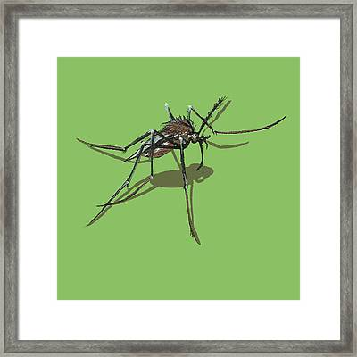 Framed Print featuring the painting Mosquito by Jude Labuszewski
