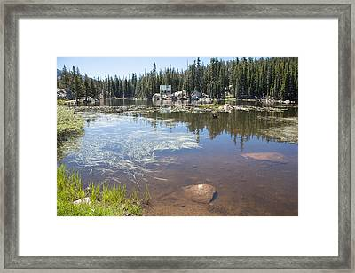 Mosquito Lake Framed Print by Peter Dyke