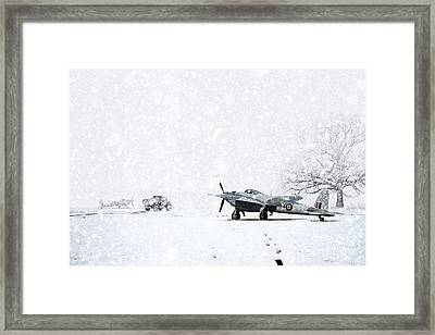 Mosquito Winter Framed Print by J Biggadike