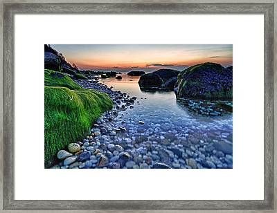 Moss And Water Framed Print by Rick Berk