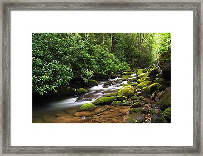 Moss-covered Boulders Along Roaring Framed Print by Panoramic Images
