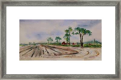 Framed Print featuring the painting Moss Landing Pine Trees Farm California Landscape 2 by Xueling Zou