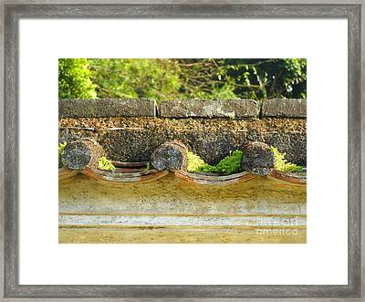 Moss On An Old Chinese Roof Framed Print by Kathy Daxon