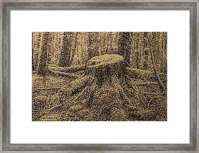 Moss On The Stump Framed Print