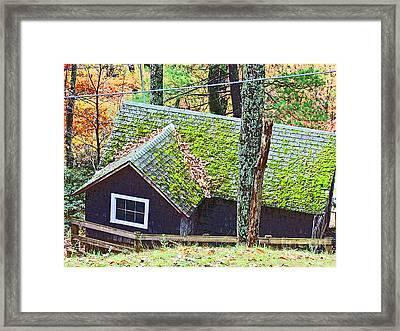 Moss Roof Framed Print by Beebe  Barksdale-Bruner