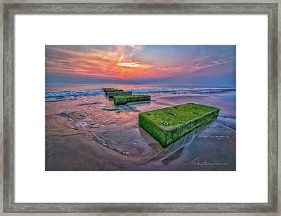 Mossy Blocks 6312 Framed Print