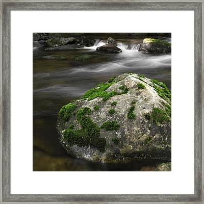 Mossy Boulder In Mountain Stream Framed Print