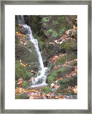 Mossy Falls Framed Print by Lisa Biczi