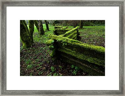 Mossy Fence 5 Framed Print by Bob Christopher