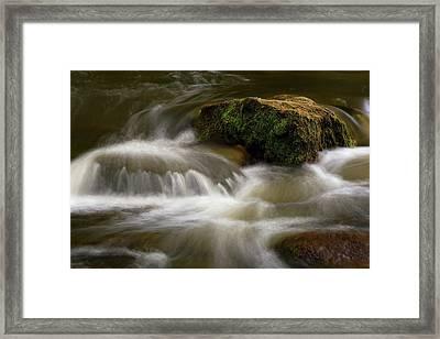 Mossy Foam Framed Print by Timothy McIntyre
