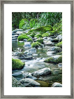 Mossy Forest Stream Framed Print by Az Jackson