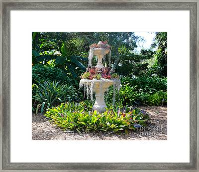 Mossy Fountain With Bromeliads Framed Print