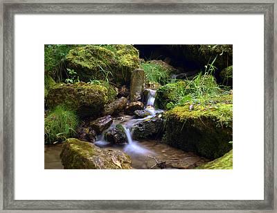 Mossy Glenn Spring 2 Framed Print by Bonfire Photography
