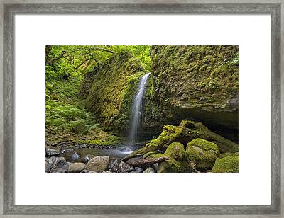 Mossy Grotto Falls In Summer Framed Print by David Gn