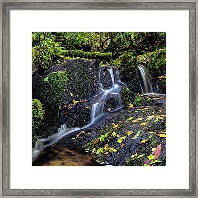 Emerald Cascades Framed Print